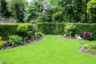 Bilder Garten-14