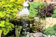 Bilder Garten-65