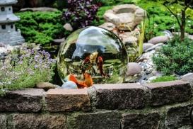 Bilder Garten-7