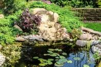 Bilder Garten-73