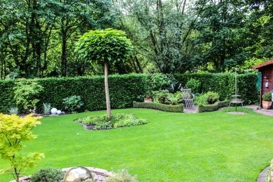 Bilder Garten-82